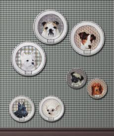 Darling Dog collection
