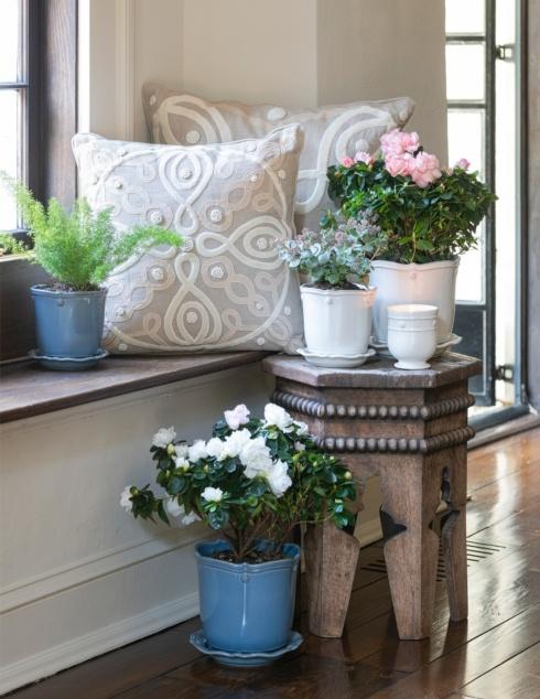 Planters collection with 4 products