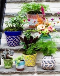 Viva Garden collection with 13 products