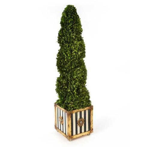 Swirl Topiary collection with 1 products