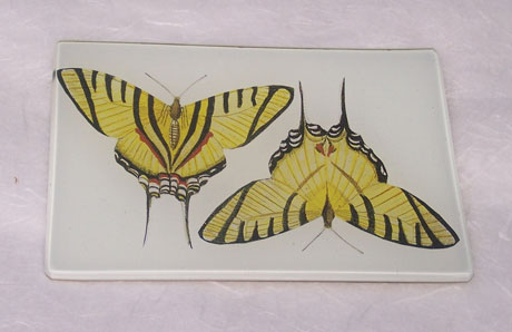 Rectangular Tray Yellow Butterflies on White