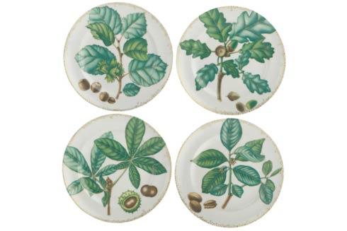 Mottahedeh Nut Leaf