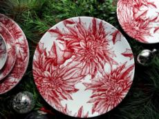 Poinsettia collection