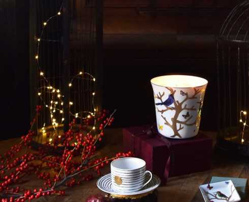 Large Candle Tumblers collection with 6 products