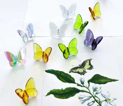 Papillon Lucky Butterfly collection with 11 products