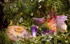 Botanics-Fantasy Garden collection with 8 products