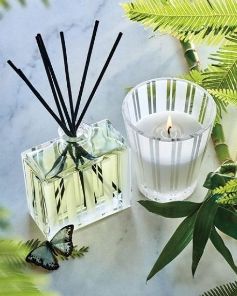 Bamboo collection with 7 products