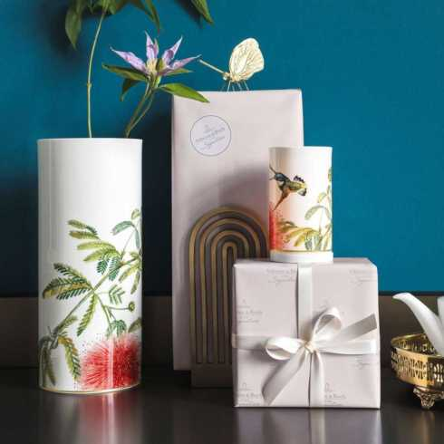 Amazonia Gifts collection with 12 products