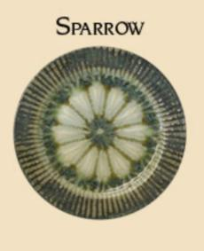 Sparrow collection with 17 products