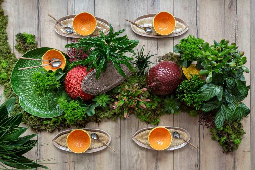 Lifestyle image 1 for Amazonia