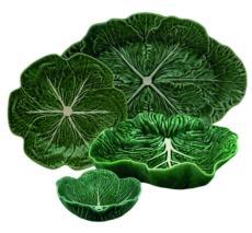Cabbage collection with 35 products