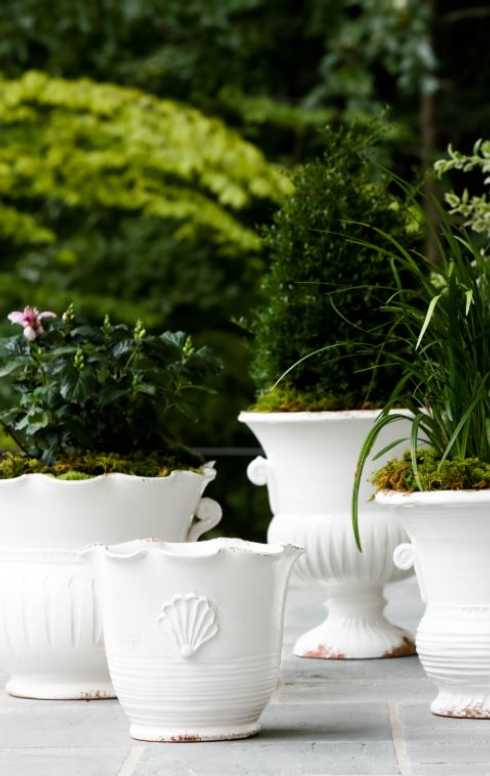 Lifestyle image 2 for Garden
