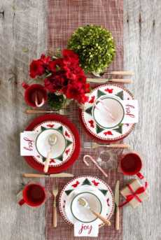 Ucello Rosso collection with 12 products