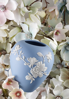 Lifestyle image 1 for Magnolia Blossom
