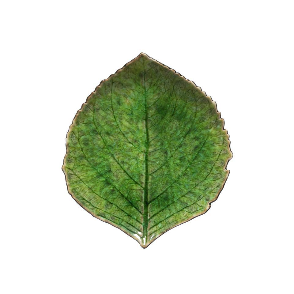 Riviera - Tomate Hydrangea Leaf 7 inch