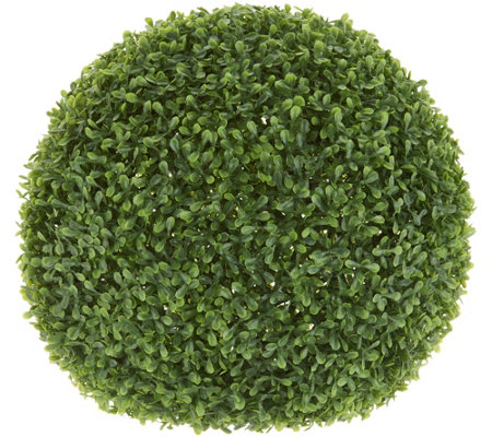 Medium Boxwood Ball collection with 1 products