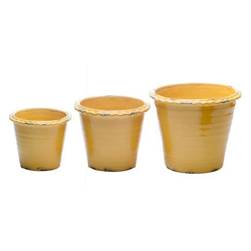 $60.00 Thumbprint Pot Gold, Set of 3