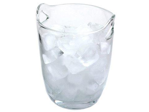 $24.00 Simplicity Clear Ice Bucket