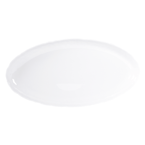 Bernardaud  Digital DIGITAL OVAL PLATTER 17