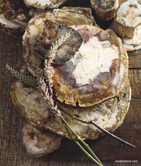 $179.99 Petrified Wood  Med