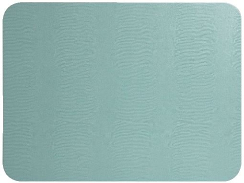 Blue Lizard Placemat collection with 1 products
