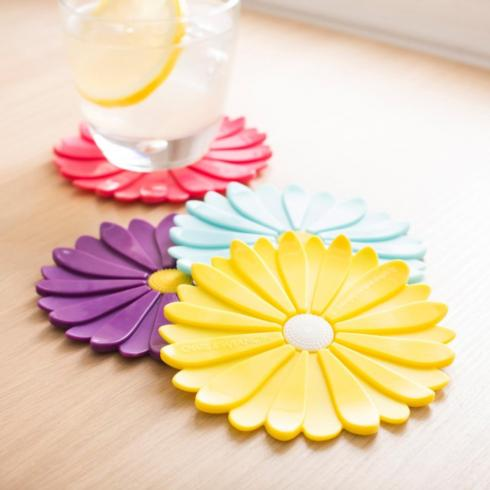 Daisy coasters collection with 1 products
