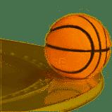$14.00 Basketball