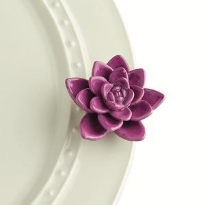 $13.49 Minis: Flower Purple Get Growi