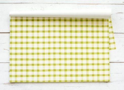 $26.00 Green Painted Check Paper Placemats Standard