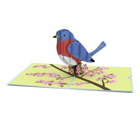 $13.00 Bluebird 3D Card