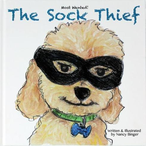 $19.99 THE SOCK THIEF
