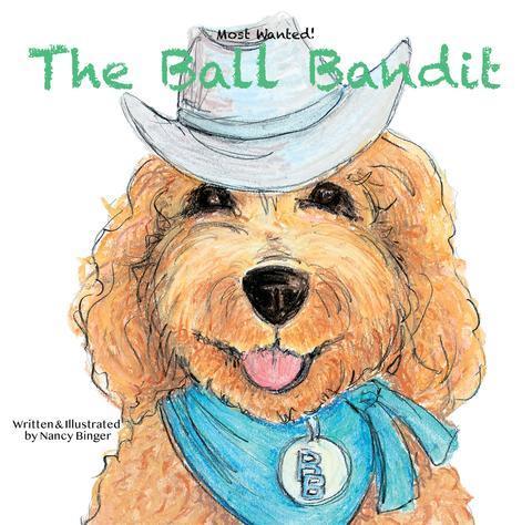 The Ball Bandit