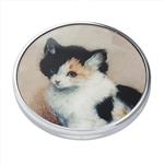 $30.00 Knip – Awakening Kitten