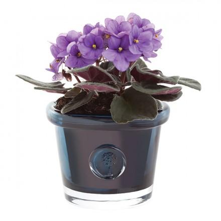 $50.00 RHS-Small Ink Blue Flower Pot