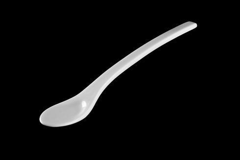 $30.00 Asian Spoon