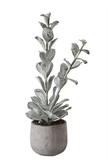 "$53.95 23-1/2"" H Faux Succulent in Cement Pot"