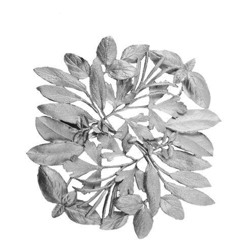 Michael Michaud Table Art   Herb Silver Trivet $66.00