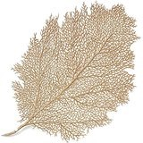 $10.00 Metallic leaf placemat, champagne