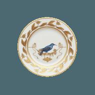 Voliere Grimpereau Bleu