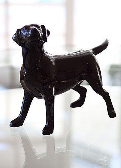 $577.50 Black Labrador Dog