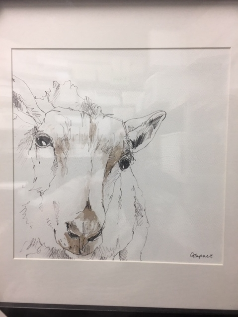 $43.00 Farm animals Sketches