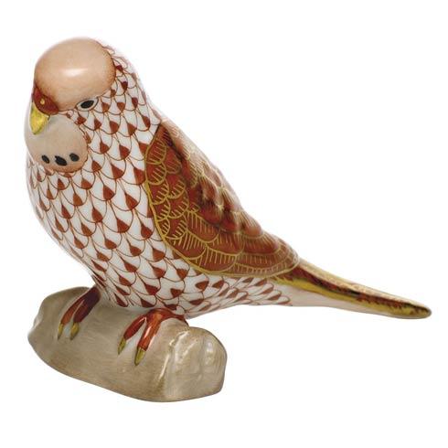 $375.00 Parakeet - Rust