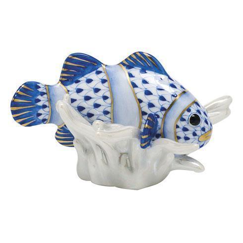 Clownfish - Sapphire