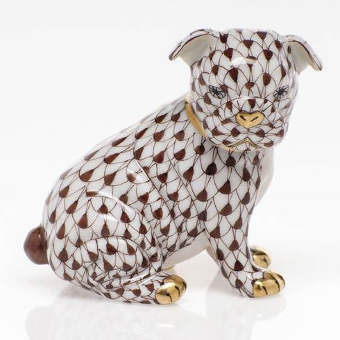 $255.00 Bulldog Puppy - Chocolate
