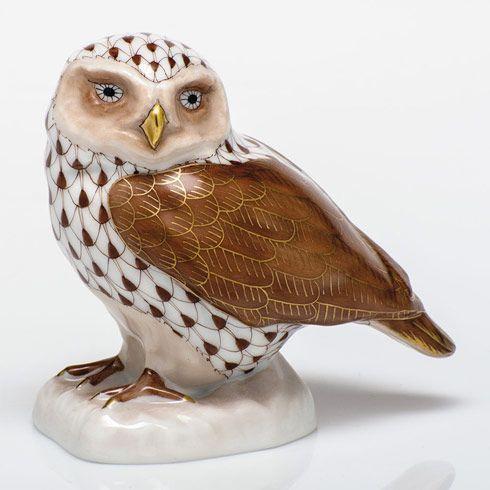 Burrowing Owl - Chocolate
