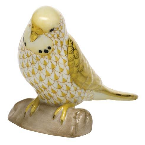 $375.00 Parakeet - Butterscotch