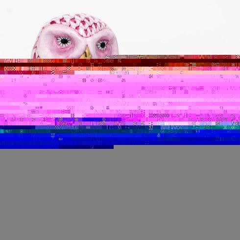$350.00 Burrowing Owl - Raspberry