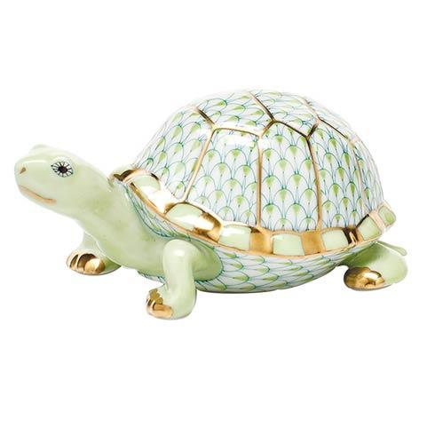 Box Turtle - Key Lime image