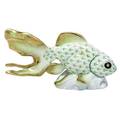 Fantail Goldfish - Key Lime