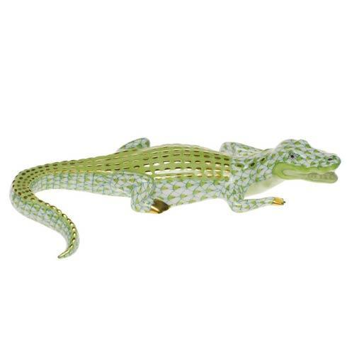 Small Alligator